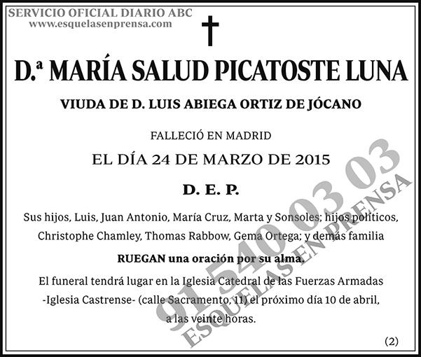 María Salud Picatoste Luna